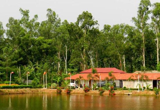 Joypur Forest