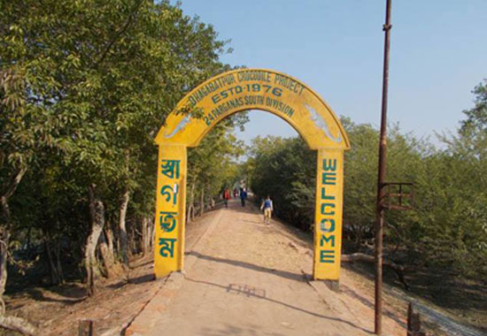 crocodile project of Bhagbatpur