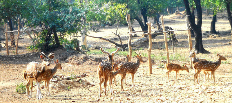Ballavpur Wildlife Sanctuary